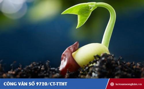 Công văn 9720/CT-TTHT về thuế GTGT đối với sản phẩm giống cây trồng