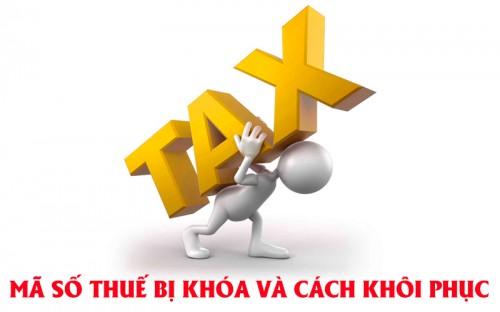 Lý do công ty bị đóng mã số thuế và cách mở mã số thuế bị đóng